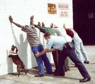 Funny Police Dog